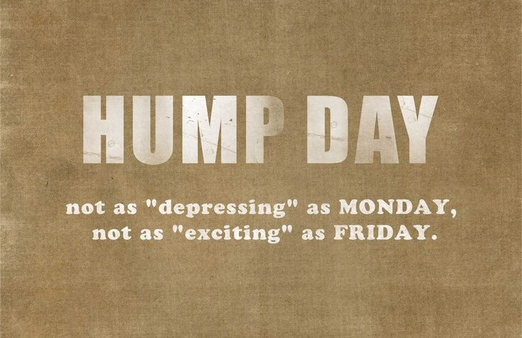 Best Work Quotes Happy Hump Day