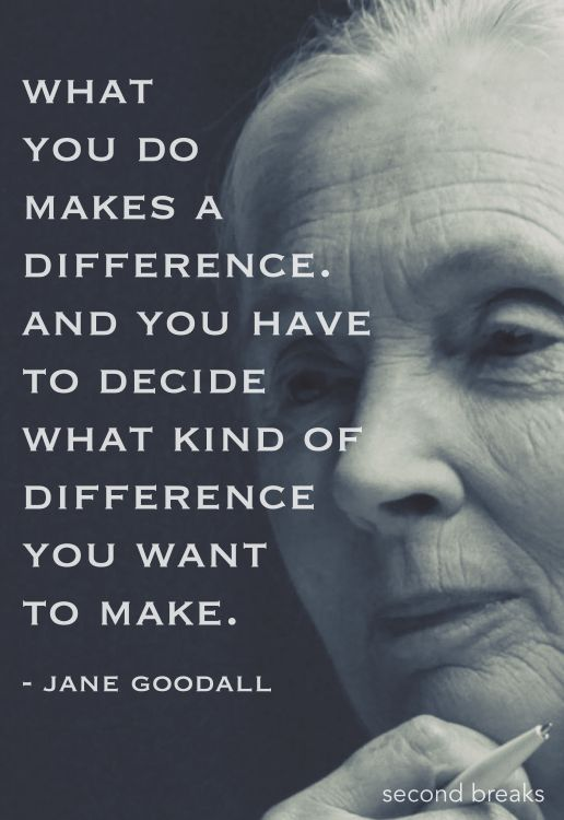 Work Quotes What Jane Goodall Said One Of My Most Favorite Quotes Delectable Favorite Quotation