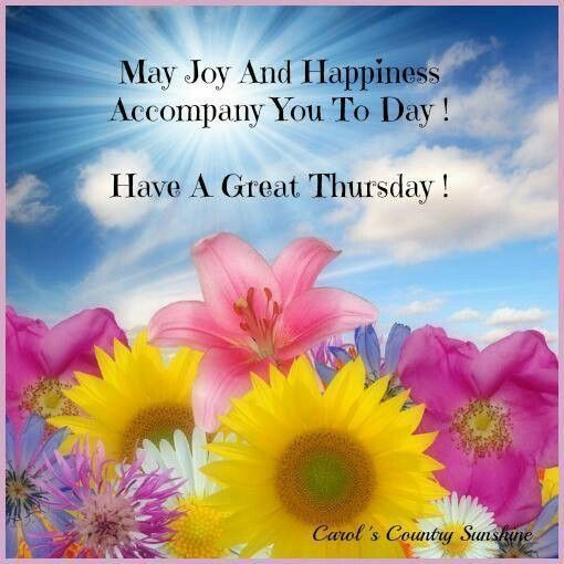 Happy Thursday Quotes Delectable Best Work Quotes Have A Great Thursday Thursday Thursday Quotes