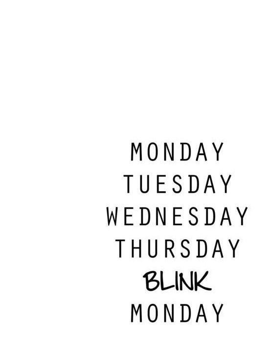 Funny Work Quotes Monday Tuesday Wednesday Thursday Blink